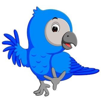 Ara ptak kreskówka