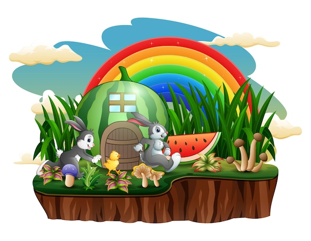 Arbuzowy domek z królikami i pisklęciem na wyspie