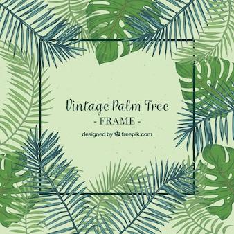 Archiwalne tła z ramki i wyciągnąć rękę liści palmowych