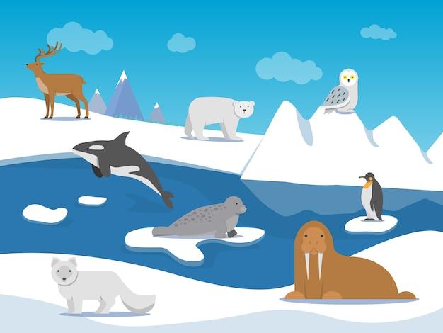 Arktyczny krajobraz z różnymi zwierzętami polarnymi