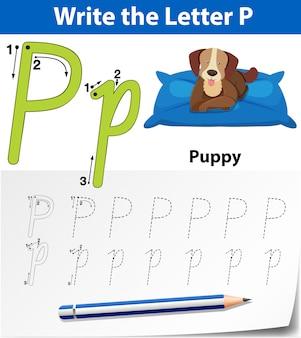 Arkusze alfabetu śledzenia litery p