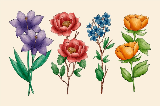 Asortyment kwiatów botaniki w stylu vintage