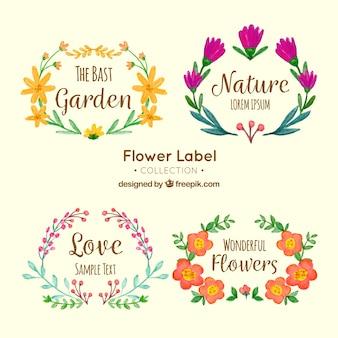 Asortymentu ładnych akwarelą naklejek kwiatowych