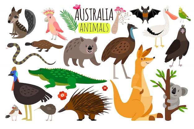 Australijskie zwierzęta