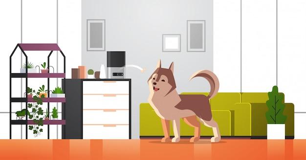 Automatyczne cyfrowe przechowywanie suchej karmy dla zwierząt domowych rzucanie kości dla psa ai podajnik posiłku dozownik koncepcja inteligentna karma dla zwierząt nowoczesny salon wnętrze poziomy
