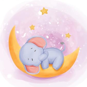Baby elephant śpij na księżycu