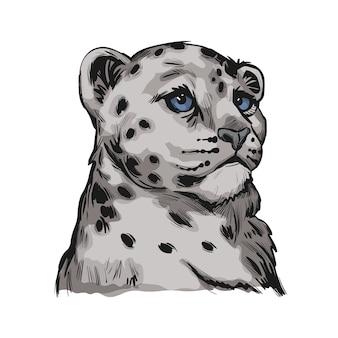 Baby leopard śnieżny, portret egzotycznych zwierząt na białym tle szkicu. ręcznie rysowane ilustracji.