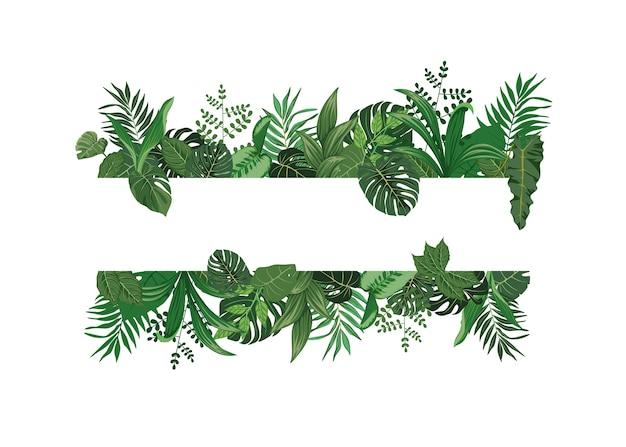 Bądź kreatywny dzięki płaskiej konstrukcji wektory tropikalnych liści zdobiących tła romantycznych cytatów i typografii słodkiego ducha.