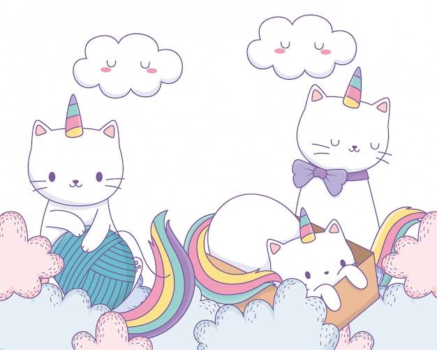 Bajkowe koty jednorożca