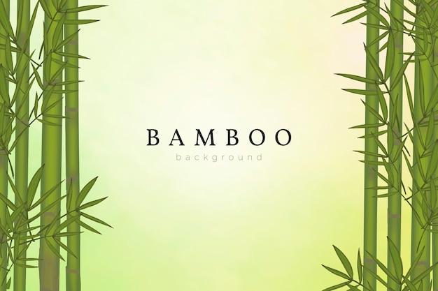 Bambusowy drzewny tło