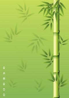 Bambusowy drzewo z zielonymi liśćmi
