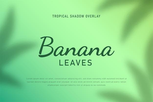 Banan pozostawia cień nakładka tło wektor ilustracja