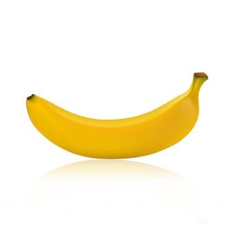 Bananowy wektor odizolowywający na białym tle.
