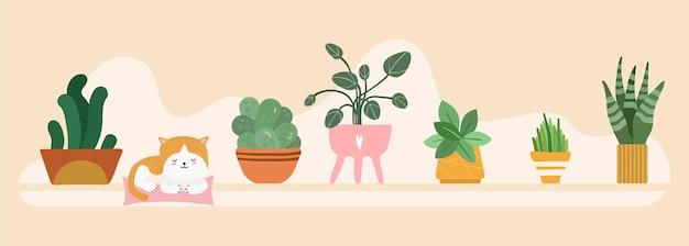 Baner do domu ogród. kwiatowe doniczki na tle półki. śliczny kot spać w botanicznym wnętrzu. ilustracja wektorowa naturalne zielone liście kotek. kwiatowa zieleń, roślina kwiatowa, ogrodowa i ogrodnicza roślina doniczkowa