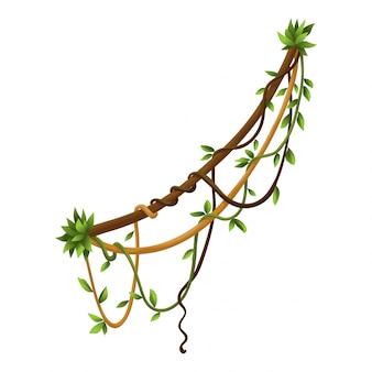 Baner oddziałów skręcone dzikie liany. rośliny winorośli w dżungli. leśny naturalny tropikalny las deszczowy