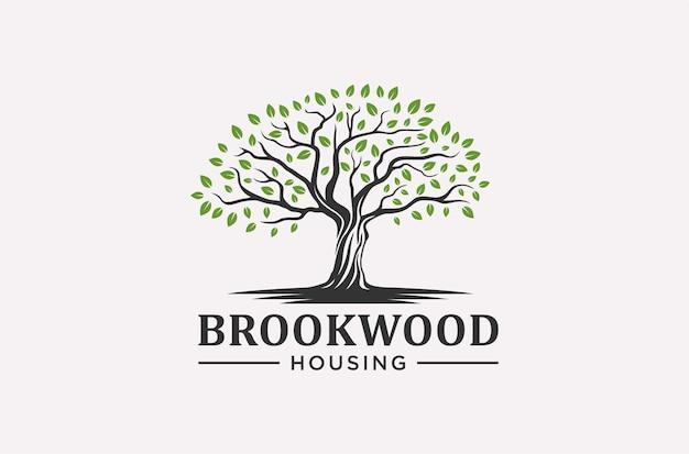 Banyan drzewo projektowania logo usługi domu.