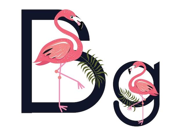 Bb flamingos