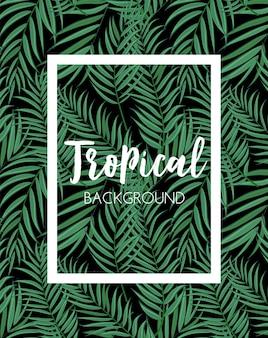 Beautifil palm tree liść tropikalna sylwetka tło wektor ilustracja eps10