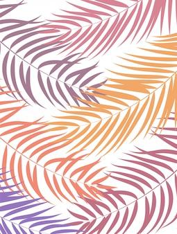 Beautifil palmy liścia sylwetka tło illustrat