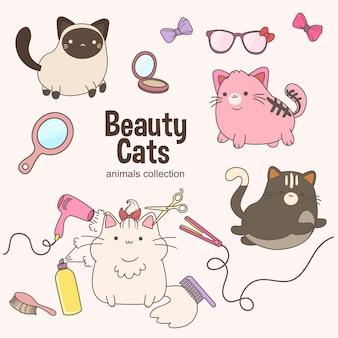 Beauty cats