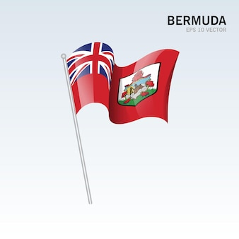 Bermudy macha flagą na szarym tle