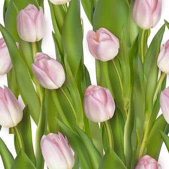 Bez szwu z różowych tulipanów i zielonych liści na białym tle.