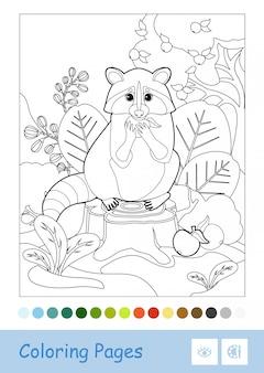 Bezbarwny konturowy wizerunek szop pracz siedzi na pniu i je jabłka odizolowywającego na białym tle. dzieci w wieku przedszkolnym z dzikimi zwierzętami kolorowanki ilustracje do książek i działania rozwojowe.