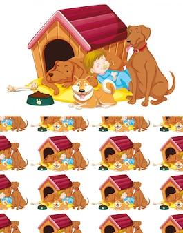 Bezproblemowa z dziewczynami i psami