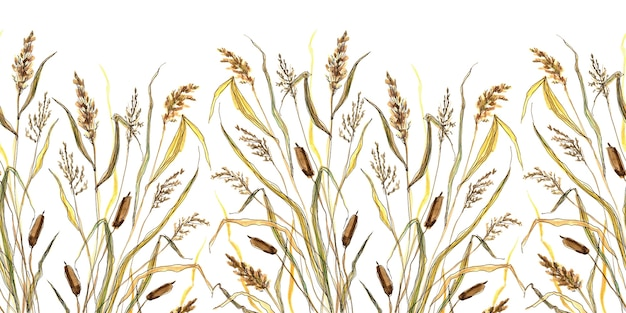 Bezszwowa granica szkicowania trawy