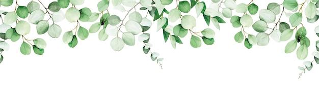 Bezszwowa ramka z liści eukaliptusa i gałęzi akwarela rysunek