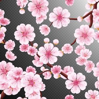 Bezszwowa różowa sakura.