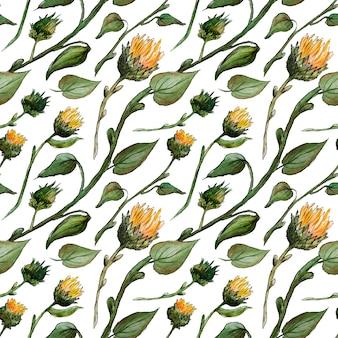 Bezszwowe akwarela wzór pąki słonecznika