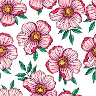 Bezszwowe tło z dzikiej róży kwiatów
