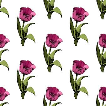 Bezszwowe tło z kolorowe różowe tulipany