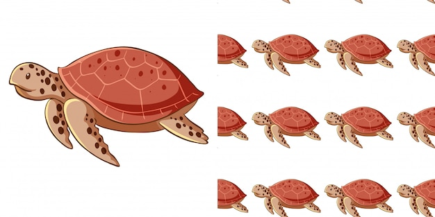 Bezszwowe tło z żółwi morskich