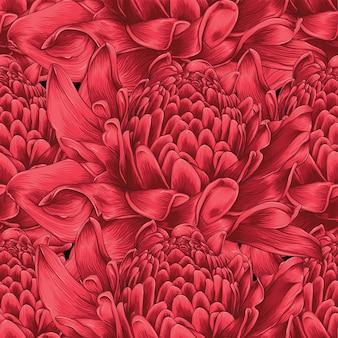 Bezszwowe wzór czerwona pochodnia imbir kwiaty