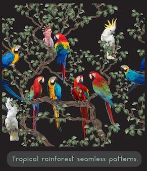 Bezszwowe wzory tropikalnych lasów deszczowych amazonii i kolorowe ptaki ara.