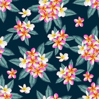 Bezszwowy deseniowy frangipani kwitnie abstrakcjonistycznego tło.
