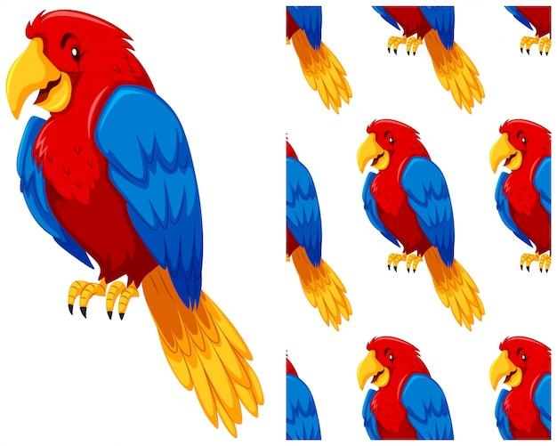 Bezszwowy papuga wzór odizolowywający na bielu