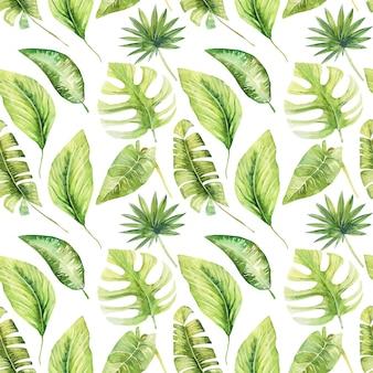 Bezszwowy wzór akwareli zieleni tropikalni liście monstera, banan i palmy, ręcznie malowany na białym tle
