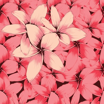 Bezszwowy wzór menchii frangipani kwitnie abstrakcjonistycznego bacground