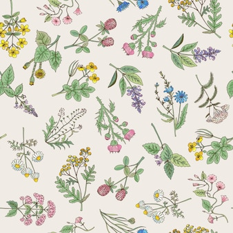 Bezszwowy wzór różnorodni ręka rysujący ziele i kwiaty
