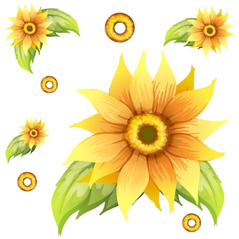 Bezszwowy wzór tła ze słonecznikami