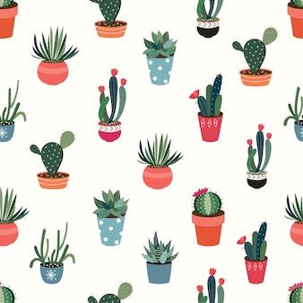 Bezszwowy wzór z kaktusami i sukulentami na białym tle