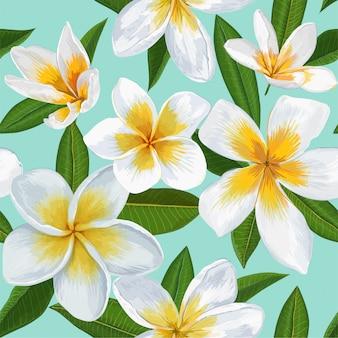 Bezszwowy wzór z plumeria kwiatami