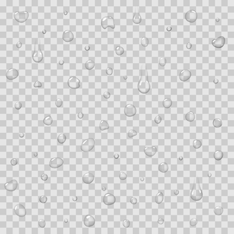 Bezszwowy wzór z podeszczowymi kroplami odizolowywał wektor