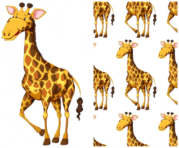 Bezszwowy żyrafa wzór odizolowywający na bielu