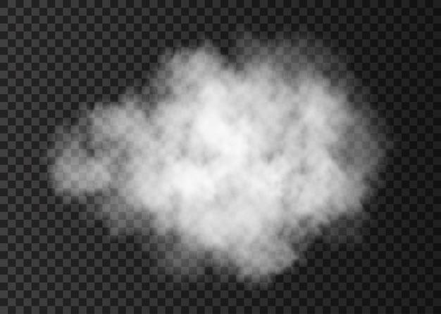 Biała chmura dymu na przezroczystym tle
