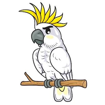 Biała kakadu kreskówka