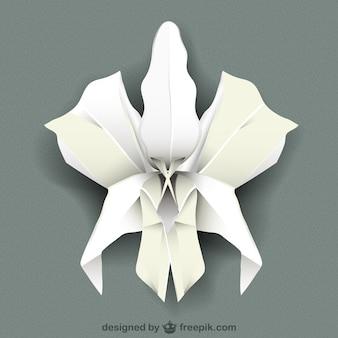 Biała orchidea wektor